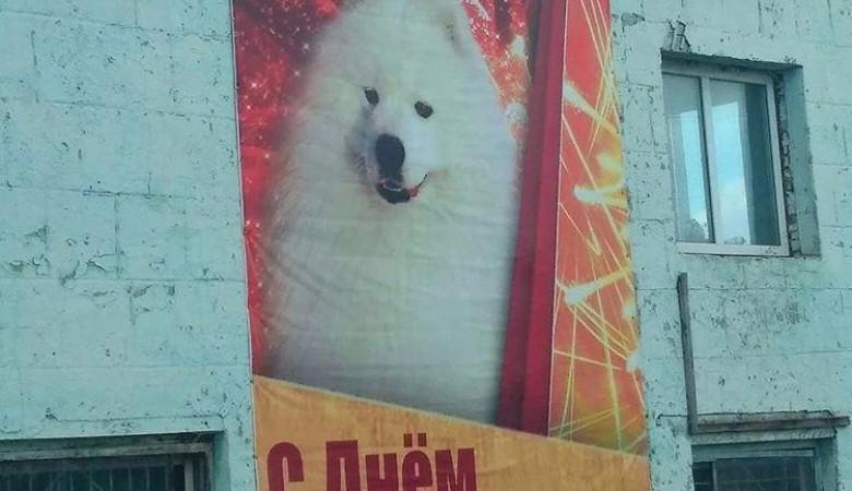ВКузбассе к 9 мая предприниматель развесил баннеры ссобакой ипоздравлением