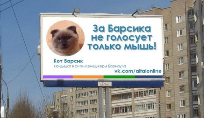 Алтайский губернатор мог бы встретиться с котом Барсиком