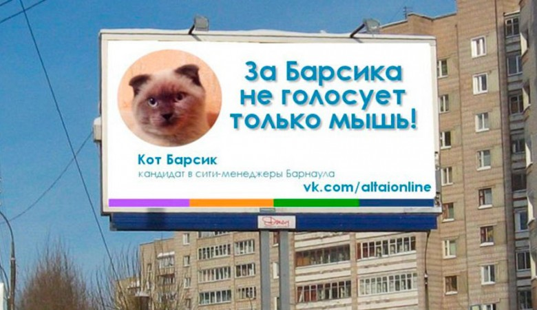 Алтайский губернатор анализирует «феномен Барсика»