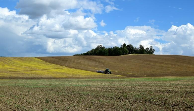 На Алтае начали полевые работы на 2 недели раньше сроков из-за быстрого схода снега