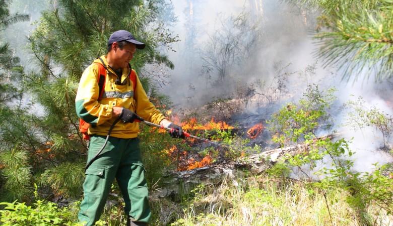 В Бурятии локализованы все крупные очаги лесных пожаров