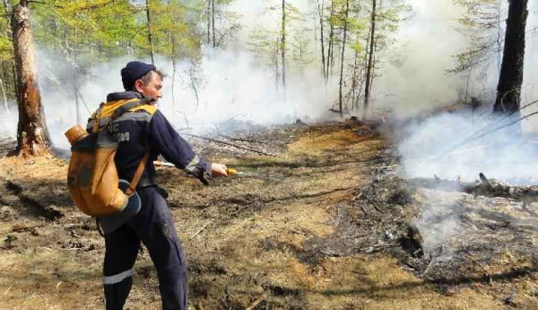 Житель Алтайского края едва не спалил целое село