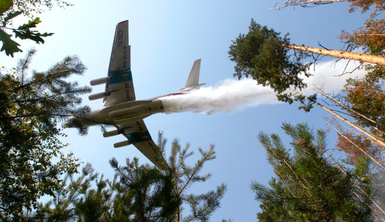 Все лесные пожары в Иркутской области оказались потушенными - власти