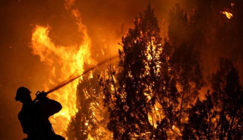 В Бурятии площадь лесных пожаров увеличилась до 115 тысяч га