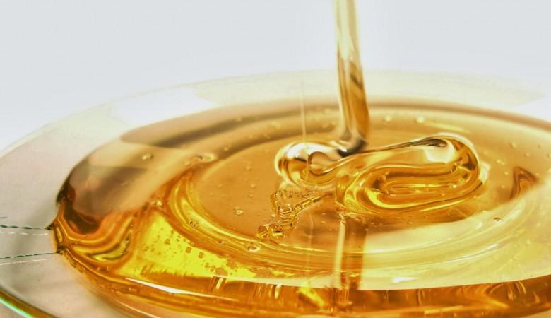 Из Казахстана в Россию пытались незаконно ввезти полтонны меда