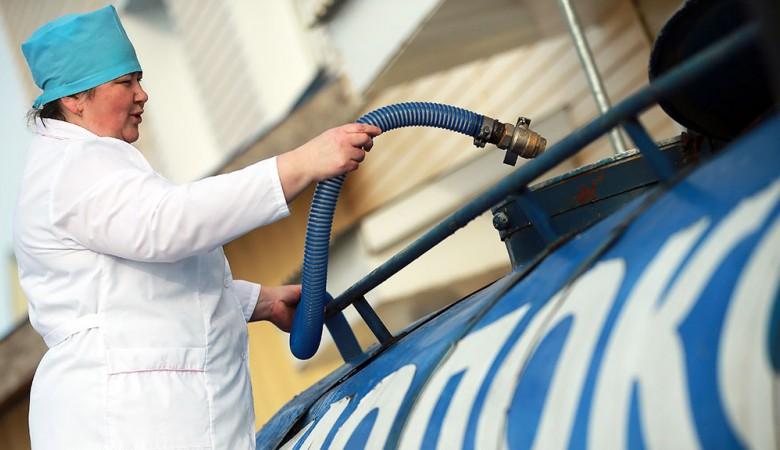 Производители молока на Алтае вошли в сговор, установив низкие закупочные цены для фермеров – ФАС
