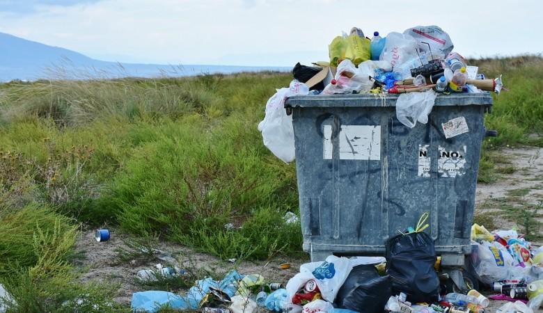 Республика Алтай обещает переработать весь мусор в тротуарную плитку