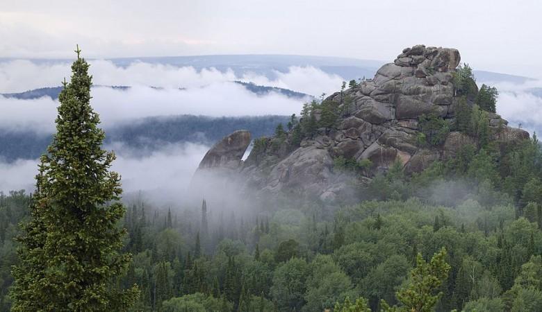Власти Красноярского края потратили на охрану природы 25,7 млрд руб в прошлом году
