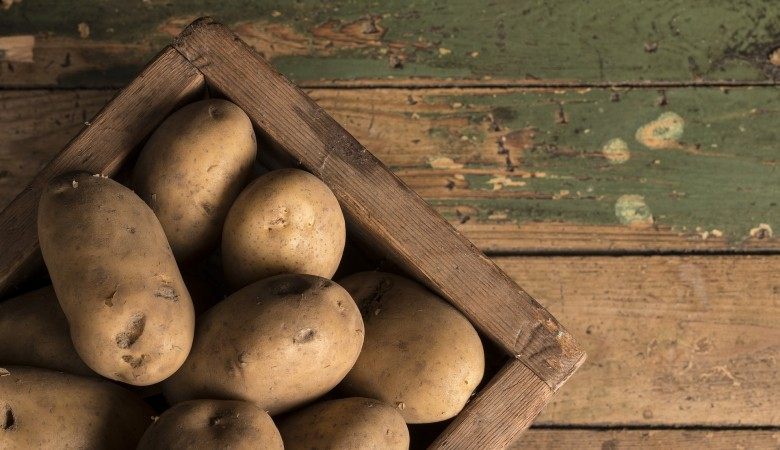 Ночные воры открыли сезон сбора картофеля вместо садоводов в Алтайском крае