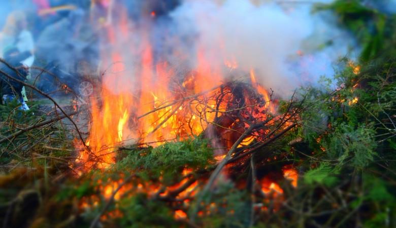 Чрезвычайная пожарная опасность отмечается в двух районах Алтайского края