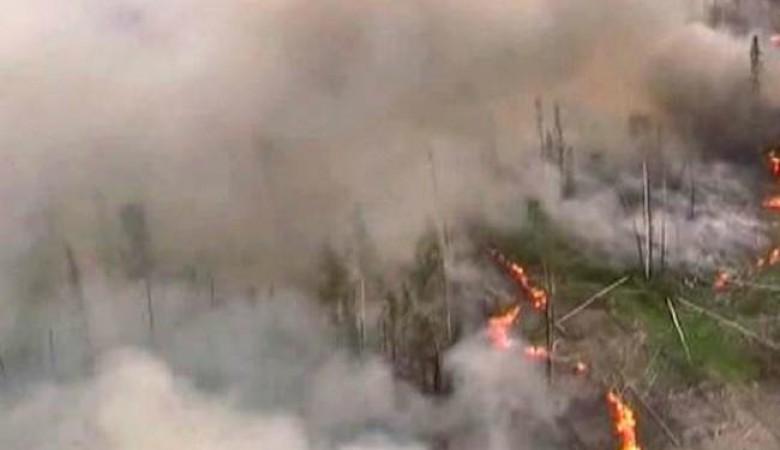 Вопреки обещанию главы МЧС, в СФО продолжают гореть леса