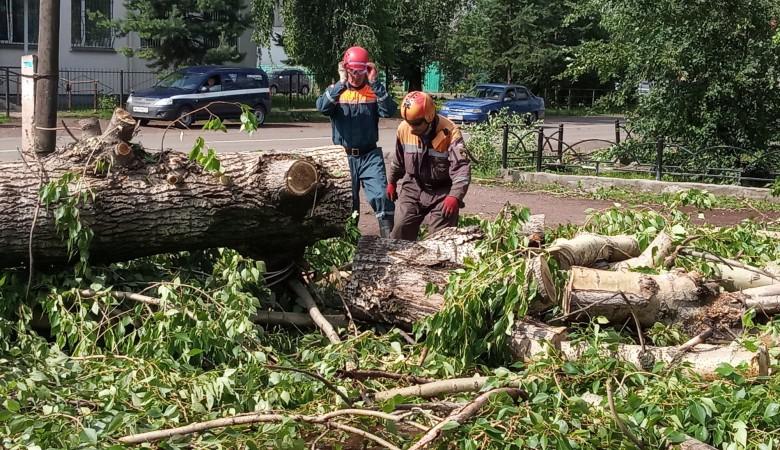 Ветер повредил опоры ЛЭП и оставил без света 11 деревень в Красноярском крае