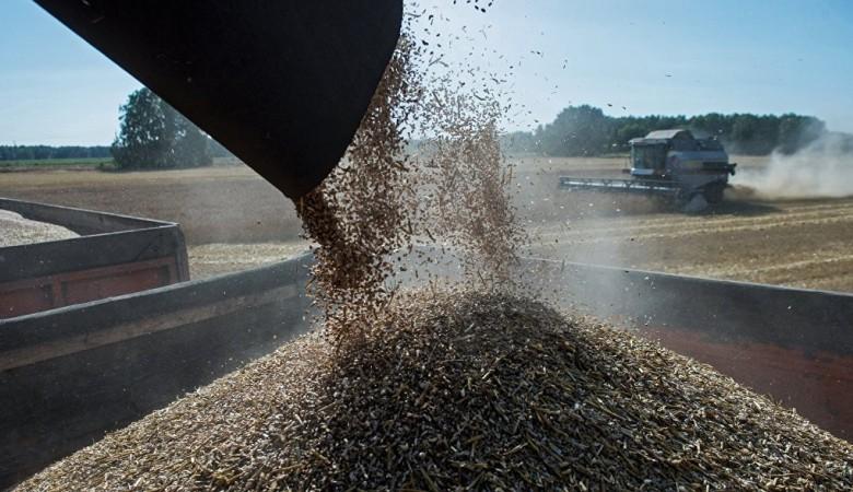 Омская область создаст компанию для наращивания экспорта зерновых