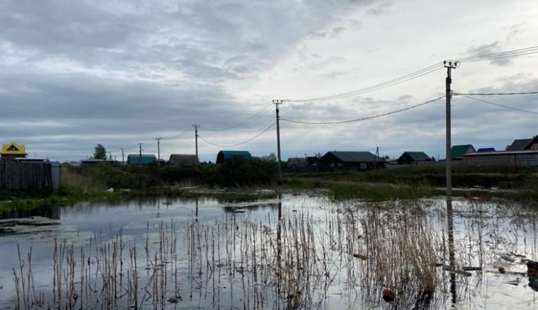 Почти 200 участков подтопили грунтовые воды в садоводствах Иркутска. Введен режим ЧС