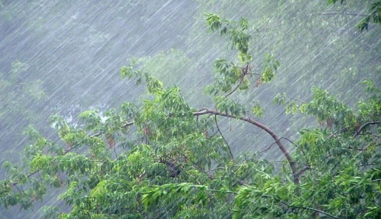 Жителей Томской области предупредили о сильных дождях и грозах 17 мая