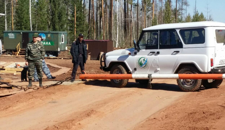 Два природных пожара потушили за сутки в Иркутской области на 72,2 гектара