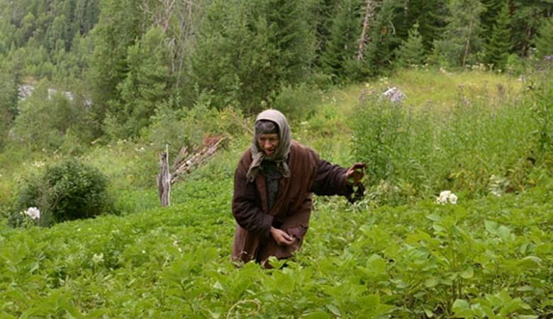Отшельнице Агафье Лыковой, живущей в Западных Саянах, привезли арбузы и виноград