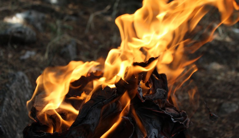 В Хакасии ликвидировали возгорания на 65 гектарах леса