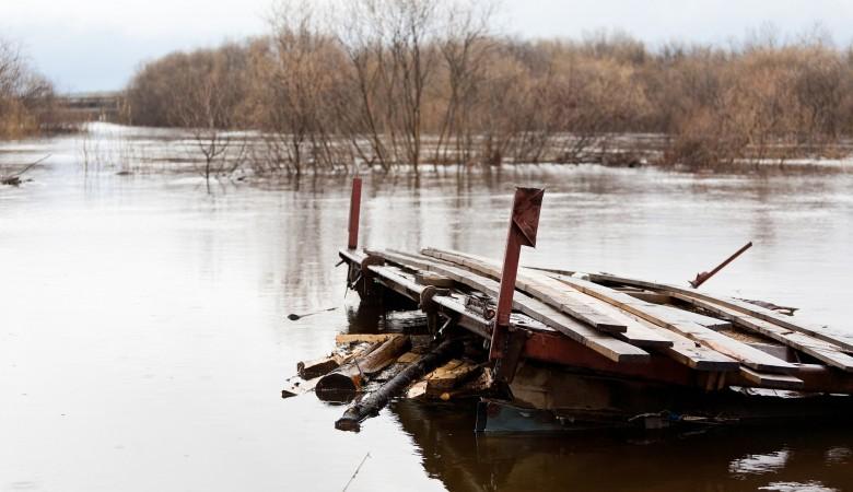 В Омской области 187 поселений могут оказаться в зоне подтопления при весенних паводках