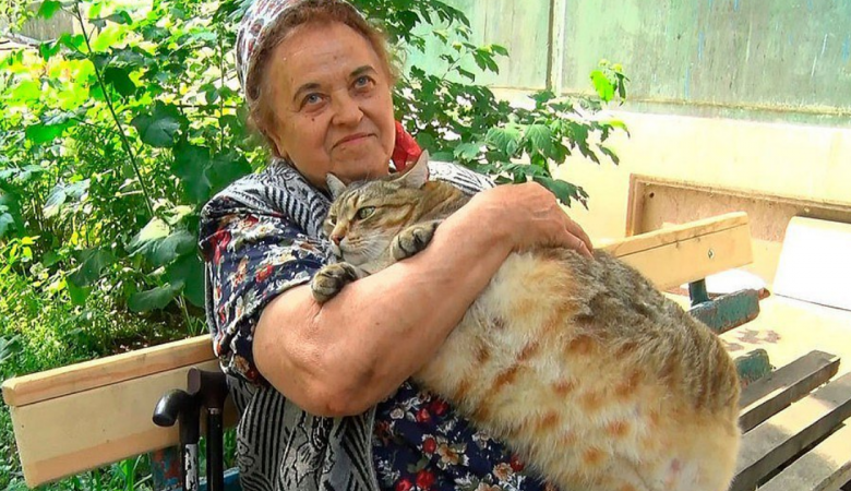 Самый толстый кот России помог бийчанке справиться с коронавирусом