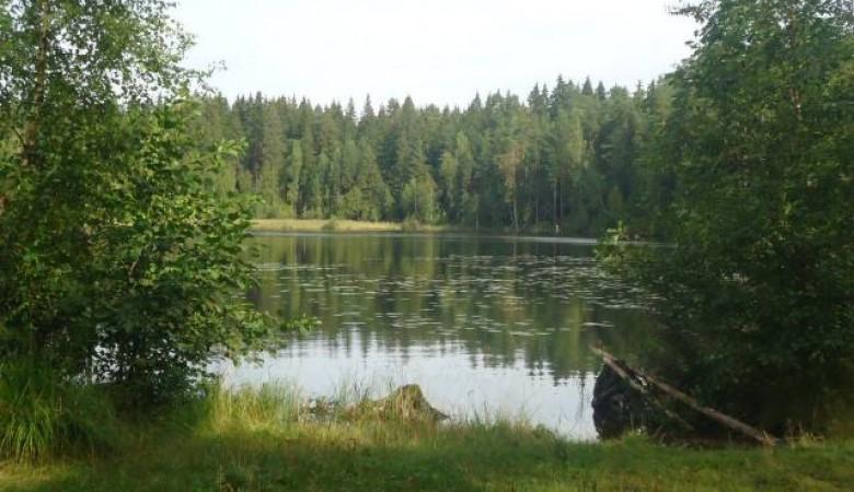Томские ученые изобрели технологию по очистке водоемов от нефти