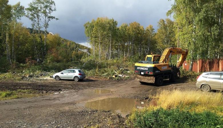 Для строительства объектов к Универсиаде в Красноярске вырубают лес